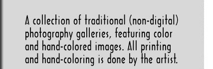 A collections of traditional (non-digital) photography galleries, featuring color and hand-colored images. All printing and hand-coloring is done by the artist.